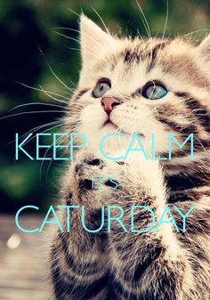 keep calm it's Caturday / created with Keep Calm and Carry On for iOS #keepcalm #caturday #kitten