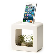 It's a power flower! The ceramic Bloom Box is both an iPhone dock (also fits Android devices) and a planter. Your smartphone sits on top and there's an Flower Power, Iphone Stand, Iphone Charger, Miniature Plants, Ceramic Planters, Docking Station, Apple Products, Planter Boxes, Corporate Gifts