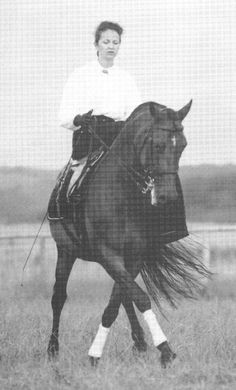 Woman riding in a side saddle. All The Pretty Horses, Beautiful Horses, Side Saddle, Dressage Horses, Vintage Horse, Horse World, Horse Pictures, Horse Love, Equestrian Style