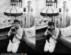 Feline with friendly William Faulkner Celebrities With Cats, Celebrities Then And Now, Celebs, I Love Cats, Big Cats, Cool Cats, Men With Cats, William Faulkner, Cat People