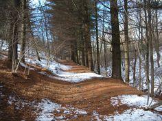 Il parco dei Lagoni innevato (o quasi) #Mercurago #Arona ( #Novara #Piedmont #Italy )