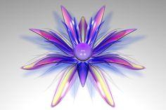 DAmn Flower Two by TylerXy on DeviantArt