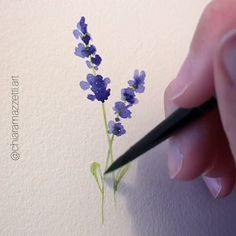 art step by step Lavender, loose watercolor flower Watercolor Paintings For Beginners, Watercolor Drawing, Watercolor Cards, Floral Watercolor, Painting & Drawing, Body Painting, Watercolor Flowers Tutorial, Flower Tutorial, Abstract Watercolor Tutorial