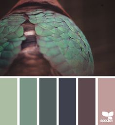 feathered hues | design seeds | Bloglovin