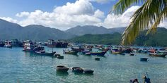 Want to see a whole, beautiful, cultural and colorful country in just two weeks? Book a flight to Vietnam and we'll show you how to do it.    This 14-...