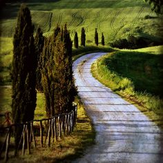 Agriturismo Terrapille & Val d'Orcia, Pienza, Tuscany, Italy {originally entitled: the road by beesquare, Noelle Smith}, via Flickr