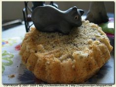 Angie's Recipes - Catnip Cake For Cats