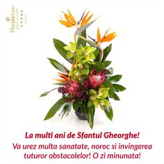 Felicitare speciala de Sfantul Gheorghe  https://www.floridelux.ro/flori-pentru-ocazii/flori-cadouri-sarbatori/flori-sf-gheorghe-23-aprilie/