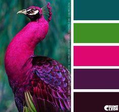 Color Inspiration - contrasting colors for cinder block porch shelf (purple & blue) - CoDesign Magazine Color Schemes Colour Palettes, Paint Color Schemes, Colour Pallette, Color Combos, Peacock Color Scheme, Purple Color Schemes, Green Palette, Peacock Colors, Color Harmony