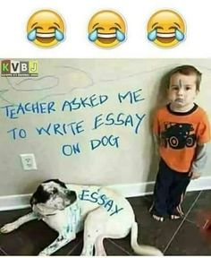 funny school jokes * funny school jokes ` funny school jokes in hindi ` funny school jokes friends ` funny school jokes student ` funny school jokes classroom ` funny school jokes teachers ` funny school jokes feelings ` funny school jokes hilarious Funny Baby Memes, Really Funny Memes, Funny Minion Memes, Funny School Jokes, Some Funny Jokes, Crazy Funny Memes, Funny Qoutes, Funny Video Memes, School Humor