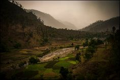 Dawns that flaunt Monsoonal jaunts Farmers in repose  the showers spared us their monsoonal squalls for most of the short trip, but let out this ickle, maybe just so that we may not feel left out of the char dham conundrums… the lush valleys of Yamuna basin, near Purola, Uttarakhand…