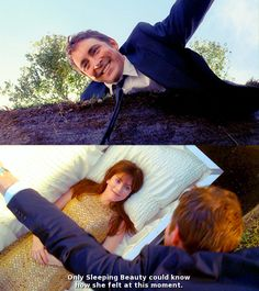 """Pushing Daisies, """"Pie-lette"""". The most beautiful show ever."""