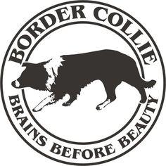 Resultado de imagen para It's a border collie #bordercollie
