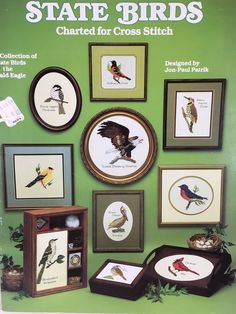 STATE BIRDS CHARTED FOR CROSS STITCH. A collection of state birds and the bald eagle. | eBay!