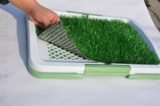Fake Grass for Dogs Img source: Fake Grass For Dogs, Artificial Grass For Dogs, Artificial Turf, Backyard Garden Design, Backyard Fences, Backyard Ideas, Lawn And Landscape, Fence Art, Dog Boarding