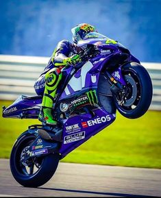 #Valentinorossi #vr46 #motogp Motogp, Monster Energy, Ducati, Yamaha, Bengalischer Tiger, Harley Davidson Sportster 883, Sports Car Wallpaper, Performance Bike, Valentino Rossi 46