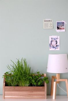 No. 10 - Cooper& apartment Sovereign patina green for more warmth in the light-flooded living room. Apartment Wallpaper, Pastel Home Decor, Green Rooms, Pastel House, Wall Colors, Apartment, Room Inspiration, Bedroom Inspirations, Living Decor