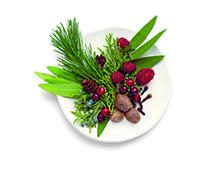 """""""Yrttimetsä"""" Myrtti Tähän tuoksuun tiivistyy koko vuodenajan kauneus. Raikas palsamikukan tuoksu yhdistyy marjojen aromeihin ja luo iloista juhlatunnelmaa Panna Cotta, Ethnic Recipes, Food, Dulce De Leche, Essen, Meals, Yemek, Eten"""