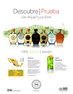 Shell Sheet en Español de Sotol Hacienda de Chihuahua (cara A).