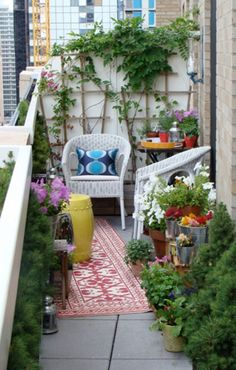 Fascinating flower balcony garden for small space with black railing banister cat mini garden