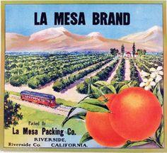 Riverside-La-Mesa-Scenic-Train-Car-Orange-Citrus-Fruit-Crate-Label-Art-Print