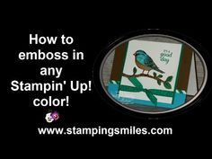 2016  VIDEO TUTORIAL  How to emboss any Stampin' Up! color   Best Birds Photopolymer Stamp Set	141525 Price: $21.00