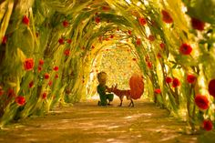 The Little Prince meets the fox in the rose garden in this wonderful hd wallpaper. The Little Prince wallpaper and wallpaper hd. The Little Prince iphone wallpaper. The Little Prince Movie, Little Prince Quotes, Le Petit Prince Film, Orange Cinema, Film Star Wars, Film D'animation, Kung Fu Panda, Movie Wallpapers, Life Lessons