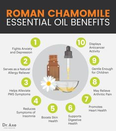 , This Essential Oil Blend Drastically Lowered Anxiety Levels in ICU Patients & Improved Sleep Better Than Conventional Nursing Methods , Roman Chamomile Essential Oil Benefits & Uses - Dr. Calendula Benefits, Matcha Benefits, Lemon Benefits, Coconut Health Benefits, Chamomile Oil, Chamomile Essential Oil, Roman Chamomile, Lemon Essential Oil Benefits, Us Health