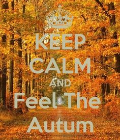 25 Quotes That Will Make You Fall In Love With Autumn | Autumn, Albert  Camus And Thanksgiving