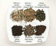 Tea Tattler | Types of Chinese Teas