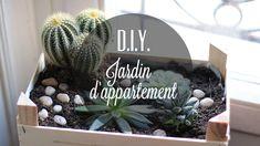 La Mouette: {D.I.Y.} Un jardin d'appartement dans une cagette