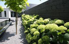 Strakke vijver, grint en hortensia's