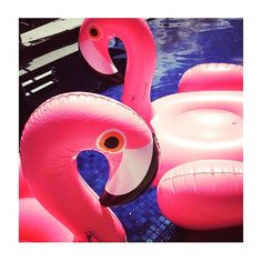 We want to see your best #summerselfie!  Tag your best summer snaps with #BookYourselfieFabulous and follow @wahanda and @beach_flamingo for a chance to win a gorgeous @athenaprocopiou silk gown ☀️ #competition #comp #win #prize #summerstyle #summer #bbloggers #flamingo