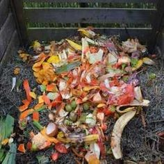 Green Waste, composting: Composting is an ideal way to transform food waste into something useful and beneficial. Peelings and leftovers typically end up in the trash and make