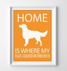 "8x10"" Flat-Coated Retriever Art, Illustrated Dog Art, Retriever Decor, Custom Dog Wall Art, Minimalist Pet Print, Flat Coated Retriever Gift by pigknit on Etsy"