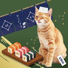 #sushi #動物系バナー #cute #かわいい #お寿司 #キャンペーン #特集 #特集バナー #犬 #動物 #animal #dog #dogs #summer #portfolio #banner #制作実績 #バナー制作 #バナー作成 #webデザイン #デザイン勉強 #webdesign #ポートフォリオ #アイキャッチ #icon #image #campaign #cat #present #simple Cats, Animals, Gatos, Animales, Animaux, Animal, Cat, Animais, Kitty