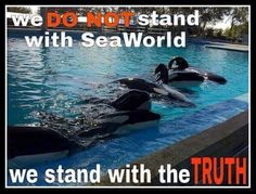 Don't buy their lies. Smash SW #Blackfish #EmptyTheTanks
