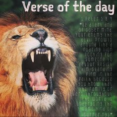 """Verse of the day:  1 Peter 5:8, 9 NIV """"Be alert and of sober mind. Your enemy the devil prowls around like a roaring lion looking for someone to devour. Resist him, standing firm in the faith, because you know that the family of believers throughout the world is undergoing the same kind of sufferings.""""  http://bible.com/111/1pe.5.8.niv  #verseoftheday"""