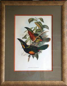 """Litho de toucans avec passe partout sur biseau orange et baguette """"ethnique"""" Atelier L'Ecoinçon"""
