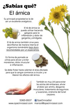 La maravillosa árnica Arnica Beneficios, Healthy Habits, Healthy Tips, Herbal Medicine, Natural Medicine, Salud Natural, Natural Treatments, Natural Remedies, Medicinal Plants