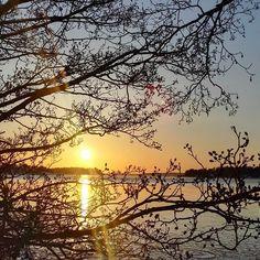Kaunista mutta kylmääFreezing beautiful . . . #-10c #helsinki #myhelsinki #ourfinland #finland #thisisfinland #luonto #luontokuva #meri #auringonlasku #nelkytplusblogit #sunset #freezing #sea #coastallife #naturelover #nature