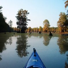 kayaking through blackwater swamps, rice plantations, barrier islands, shrimping villages and Indian ruins.  awesome