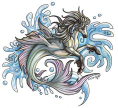 Hippocampus by *Sunimo on deviantART