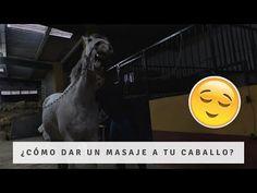 incomodidad del caballo restaurante lawrence
