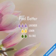 With Tea Tree for its anti-viral compounds, Lemon to boost the immune system, and Lavender for peaceful sleep you can feel better by diffusing this blend.