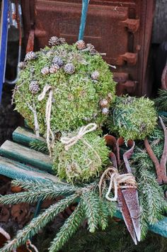Balls covered in moss, and frost Christmas Greenery, Green Christmas, All Things Christmas, Christmas Decorations, Advent, Flower Ball, Winter Wonder, Nature Crafts, Pine Cones