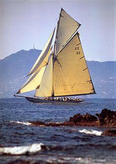 """Yacht """"Tuiga"""" built 1909"""