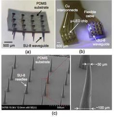 Fabricated prototypes of (a) a waveguide array and (b) the assembled array with SU-8 waveguide. (c) SEM images of a SU-8 microneedle array fabricated on a PDMS substrate