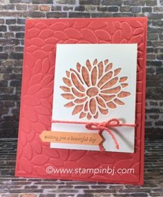 BJ's Stampin' Spot: Stylish Stems Special Reason, Cupcakes & Carousels DSP Stack, Petal Burst TIEF Stampin' Up!, BJ Peters