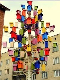 a fabulous collection of birdhouses!